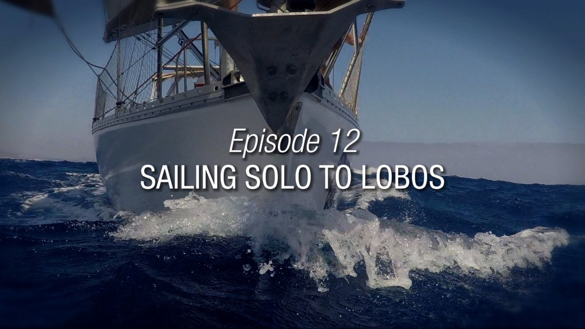 sailing solo to isla lobo