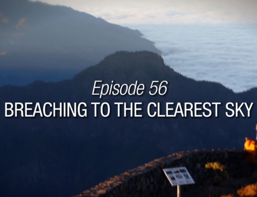 Episode 56 | Breaching To The Clearest Sky