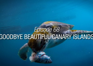 Goodbye Beautiful Canary Islands Season Finale