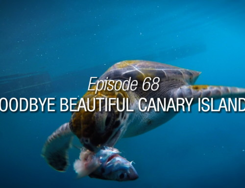 Episode 68 | Goodbye Beautiful Canary Islands | Season Finale